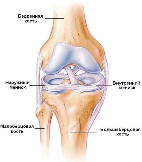 Менисков коленного сустава наросты на суставах рук йод