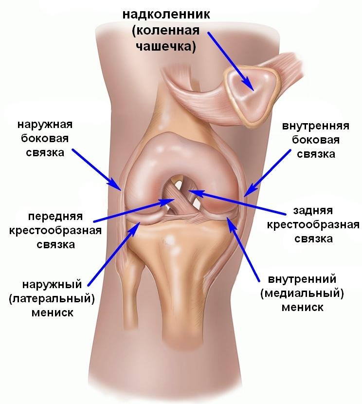 боковые связки коленного сустава растяжка