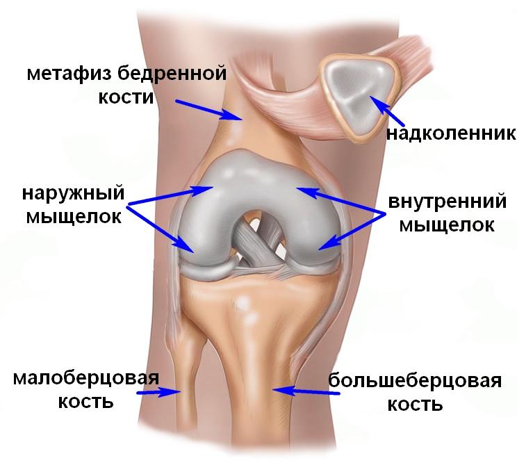 Травматология перелом коленного сустава лучезапястный сустав картинка