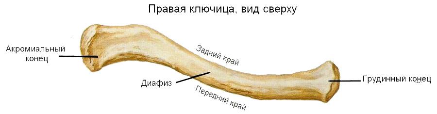 Perelomi_klyuchici